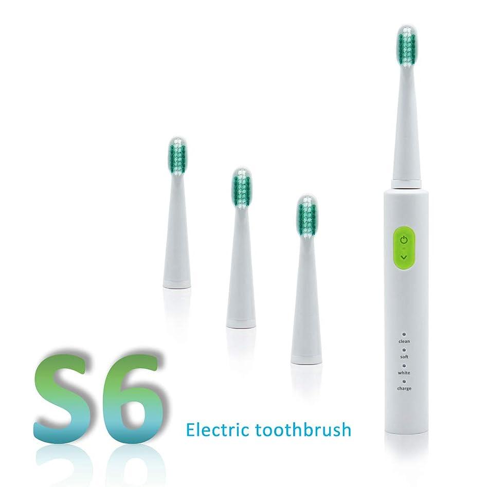 本能購入ベテランソニック電動歯ブラシ充電式USB充電4個交換式ヘッドタイマー歯歯ブラシ防水