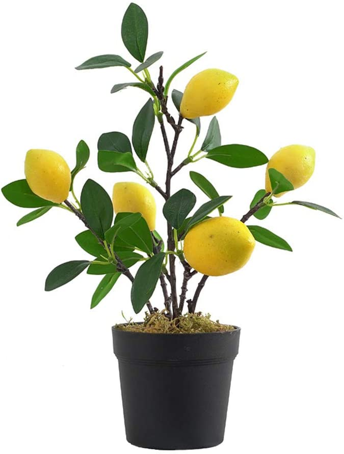 ADSRO Artificial Fruit Lemon Latest item Tree Trees Bonsai Fruits 35% OFF