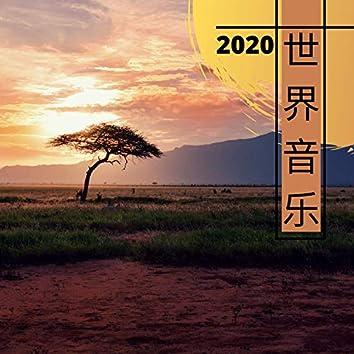 世界音乐2020 - 各种国家的民族音乐