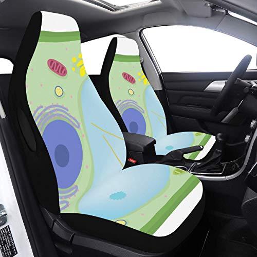 2-teiliges Set Reise-Autositzbezug Grün Pflanzenzellbiologie Mikroskop Kinder Autositzschutz Kompatibel für Airbags Universelle Passform für Autos LKWs und SUVs Sitz Autobezug