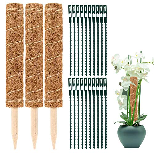 Elinala Pflanzstab Kokos, Moosstab, 3 STÜCKE (30 cm) Garden Coir Moss Stick Coir Moss Totempfahl, Plant Climbing Support Totem mit 20PCS Plant Cable Tie