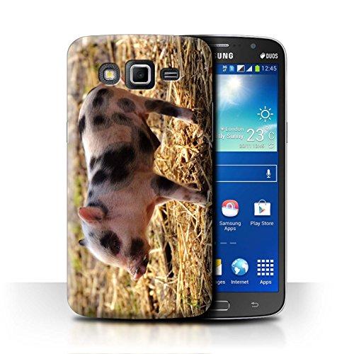 eSwish Carcasa/Funda Dura para el Samsung Galaxy Grand 2/G7102 / Serie: Lindos Animales de Compañía - Lechón/Cerdo