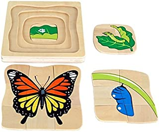 Kid Advance Montessori Butterfly Life-Cycle Puzzle