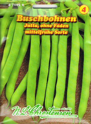 Buschbohne 'Jutta' grün,ohne Fäden, mittelfrühe Sorte