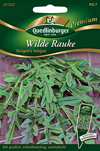 Wilde Rauke 'Dragon's tongue' Kräutersamen Quedlinburger