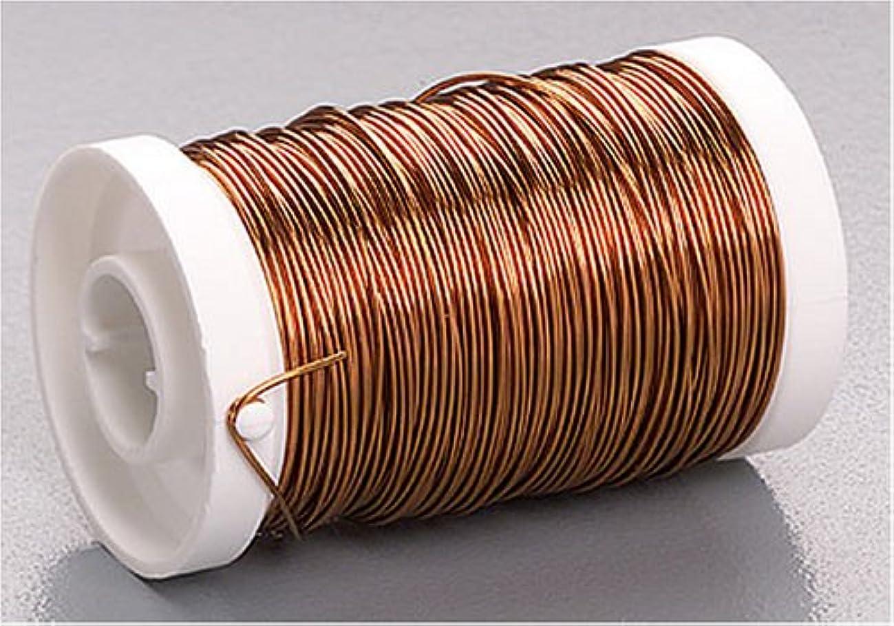 Knorr Prandell 6466753 enamelled wire, 0.5 mm diameter, mandarin
