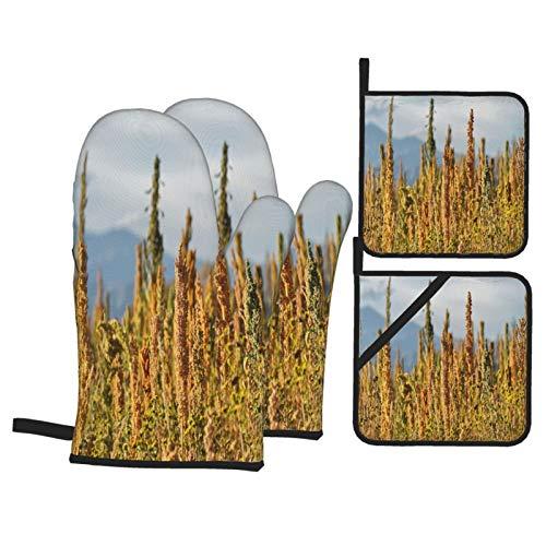 Ofenhandschuhe und Topflappen 4-teilig Set Quinoa Plantage Chenopodium in der Nähe von Cachi Northern wasserdicht und hitzebeständig,Topfhandschuhe für Kochen,Backen,Grillen