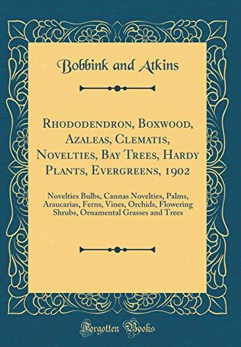 Rhododendron, Boxwood, Azaleas, Clematis, Novelties, Bay Trees, Hardy Plants, Evergreens, 1902: Novelties Bulbs, Cannas Novelties, Palms, Araucarias, ... Grasses and Trees (Classic Reprint)