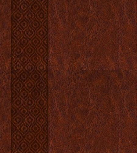 KJV Expressions Bible, Brown: Journaling Through God