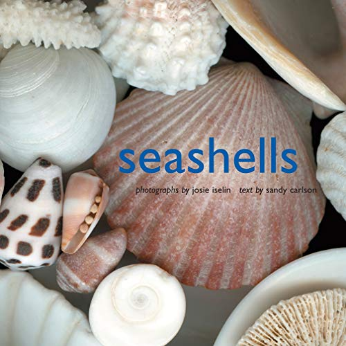 16 Best-Selling Seashell Books of All Time - BookAuthority