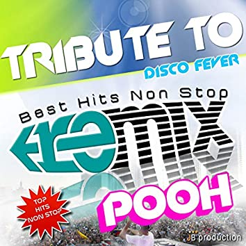 Pooh Dance Remix Megamix Non Stop
