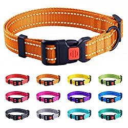 Collar Direct Reflective Collar