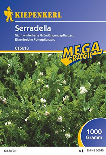 Serradella, 1 kg, Ornithopus sativus - 1 Foliensack/ 1 kg
