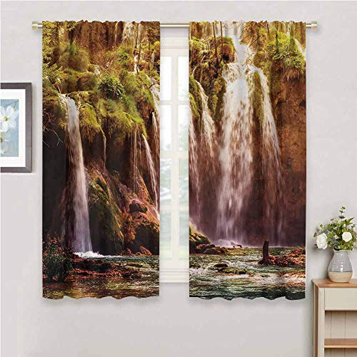 DIMICA Rustic Curtains for Living Room Nature Waterfall Cascade Forest Tree Moss Lake Stones Rocks Wonder of The World Image Home Decor Sliding Door Curtains W63 x L63 Inch Green and Brown