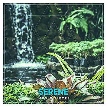 #19 Serene Music Pieces for Spa & Relaxation