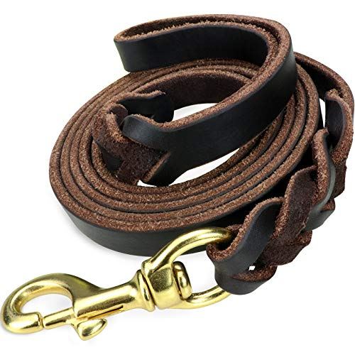 Taglory Premium Leather Dog Leash 6 Foot x 5/8 Inch, Braided Latigo Leather Training Leashes for Medium and Large Dogs, Brown