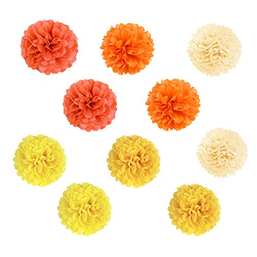 SUNBEAUTY 10er Set 20cm farbig Papier Blumen Pompoms Ball Party Geburtstag Feier Dekoration