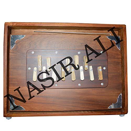 INDISCHE INSTRUMENTE, Shruti Box, groß (14 x 11 x 2,5) Zoll, Surpeti Surpeti, mit Tasche, dunkelbraune Farbe, Musikinstrument indisch