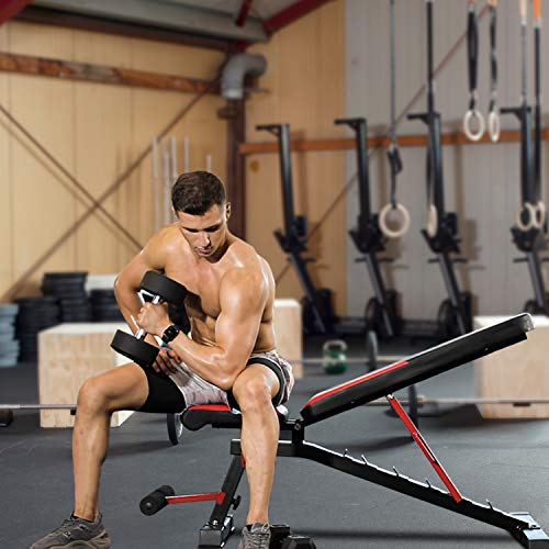 RELIFE REBUILD YOUR LIFE Adjustable Weight Bench, Utility Workout Bench for Home Strength Training, Gym Incline Decline Bench for Full Body Exercise