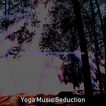 Sumptuous Harp duo - Ambiance for Chakra Yoga