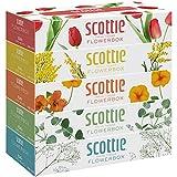 スコッティ ティシュー フラワーボックス 袋5箱