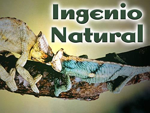 Ingenio Natural