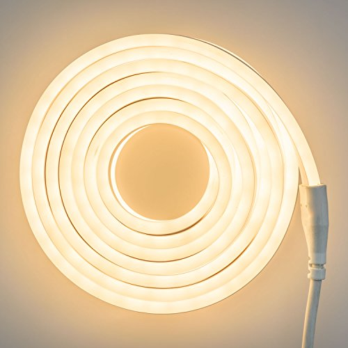 LuminalPark SMD Neon bifacciale 8 m, 960 LED Bianco Caldo, Luce Fissa, Esterno