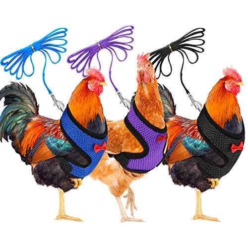3-teiliges Hühnergeschirr, atmungsaktiv, für Henne und Haustiere, mit passendem Gürtel, bequem, für Hühner, Ente oder Gans (blau, schwarz, lila)