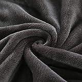 XUMINGLSJ Mantas para Sofás de Franela- Manta para Cama Reversible de 100% Microfibre Extra Suave -Granate_100 × 100 cm
