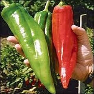 25 NEW MEXICO BIG JIM PEPPER SEEDS HEIRLOOM (non-gmo heirloom seed)