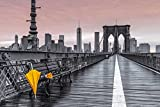 Empireposter – Frank, Assaf – Brooklyn