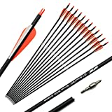 ANTSIR Carbon Arrow Hunting Arrows with Removable Tips for Archery Compound & Recurve & Traditional Bow Practice Shooting (Pack of 12)