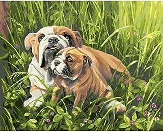 Coloriage Bouledogue Anglais.Amazon Fr Bulldog Anglais Jeux Et Jouets