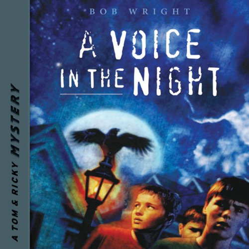 A Voice in the Night  audiobook cover art