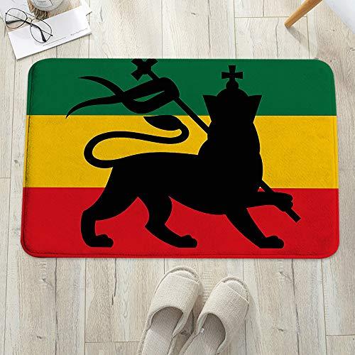 Alfombrilla de baño antideslizante, para baño o ducha,Rasta, bandera rastafari con Judah Lion en imagen inspirada en, alfombra de suelo absorbente, para sala de estar, sofá, cojín, caucho, 60 x 100 cm