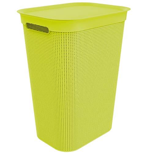 Rotho Brisen, Cesta de lavandería 50l con tapa, Plástico PP sin BPA, verde, 50l 43.1 x 34.0 x 52.9 cm