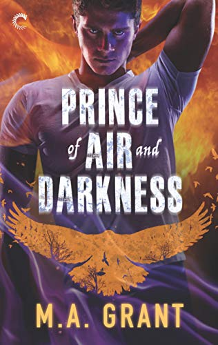 Prince of Air and Darkness: A Gay Fantasy Romance (The Darkest Court Book 1) (English Edition)