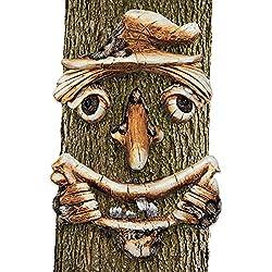 Tree face kit.