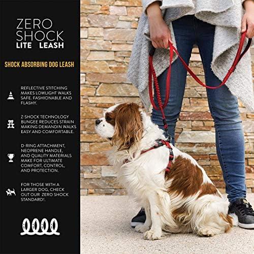 Arco Iris, L: 24 mm de Ancho x 1,45 m de Largo Holly Mascotas Correa para Perro con Neopreno para El M/áximo Confort En El Agarre
