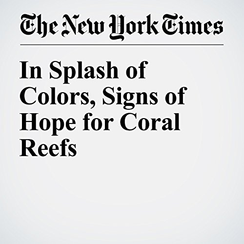 In Splash of Colors, Signs of Hope for Coral Reefs audiobook cover art