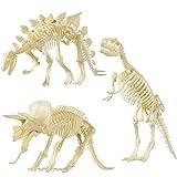NUOLUX NUOLUX 4D Dinosaurio Esqueleto Fossiles Surtido Dinosaurio Juguetes DIY 3 Piezas Dino Huesos Fósiles para Niños Niños Niñas