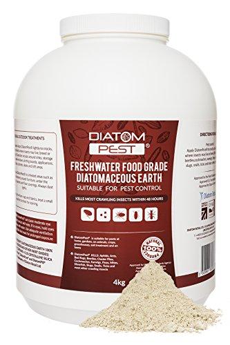 DiatomPest® content Parasites Diatomeica Earth 4kg | Catégorie Insecticide | Diatomaceous Earth