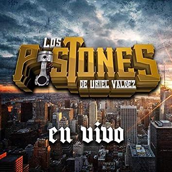 Los Pistones de Uriel Valdez (En Vivo)
