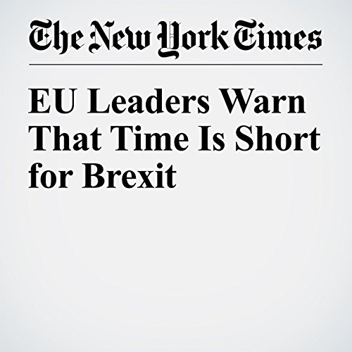 EU Leaders Warn That Time Is Short for Brexit cover art