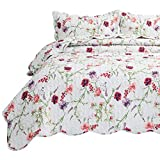 Bedsure 3-Piece Printed Quilt Set Queen/Full Size (90x96...