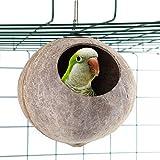 Betrothales Nido De Pájaro De Coco Natural para Chic Loros Nido De Loros De Coco Natural Estación De Alimentación De Pájaros De Mejillón para Periquitos (Color : Colour, One Size : One Size)