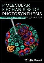 Best molecular mechanisms of photosynthesis Reviews