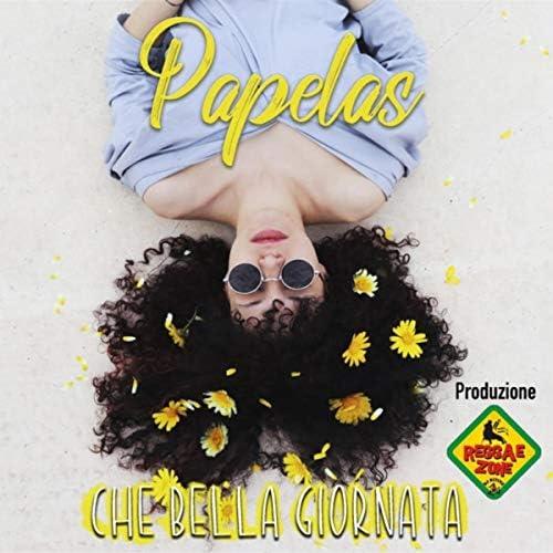 Reggae Zone & Papelas