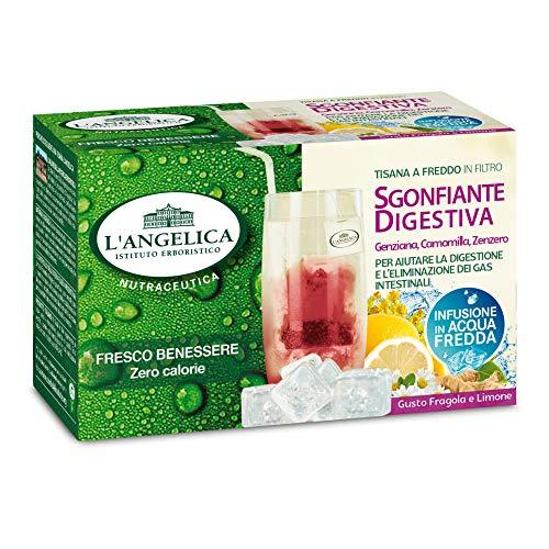 L'Angelica Tisana a Freddo Sgonfiante Digestiva - 15 Filtri [50 gr]