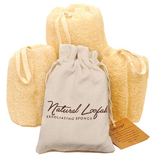 All Natural Loofah Sponge, Set of 3 Real Egyptian Bath & Shower Exfoliating Loofa Scrubber Sponges for Face, Back & Body, Eco Friendly, No Toxic Chemicals, 6' x 6' by Crafts of Egypt